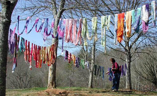 Drying Skeins of Dyed Yarn